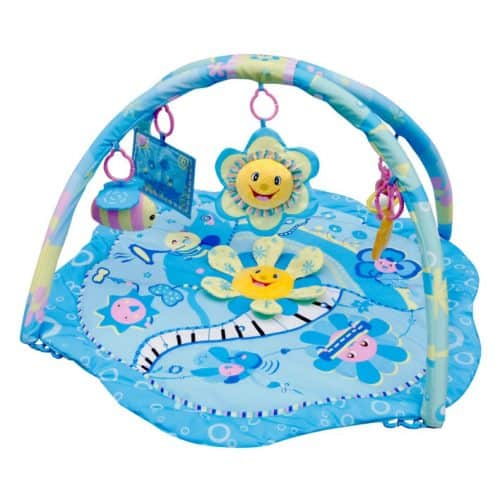 Babygym Blue Flower Music Party