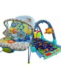 Paketerbjudande! Babysitter och Babygym Zoo Fun