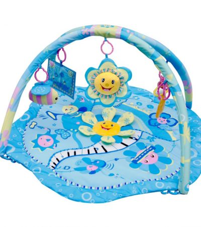 Ladida Babygym Blue Flower Musical Party