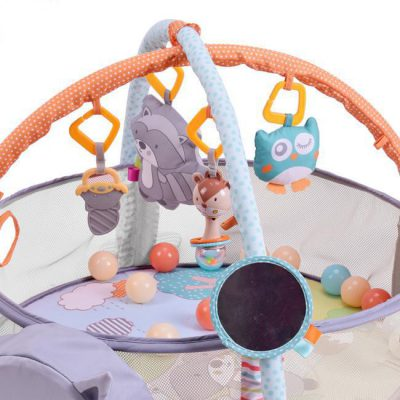 Ladida Babygym Raccoon Gym and Ball Pit